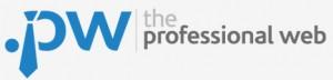 Professional Web logo