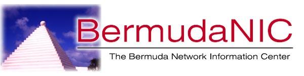 BermudaNIC logo